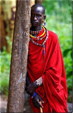 The Maasai are a Nilotic ethnic group of semi-nomadic people inhabiting southern Kenya and northern Tanzania. They are among the best known local populations due to their residence near the many game parks of the African Great Lakes, and their distinctive customs and dress