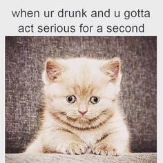 When you're drunk AF but trying to act sober around your parents: | 21 Photos Anyone Who Has Been Drunk AF Will Relate To