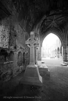 Co. Kilkenny: jerpoint abbey