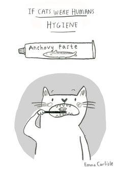 emmacarlisle:  From a series of two panel funnies titled 'if cats were humans' which will be available at BCZF next month