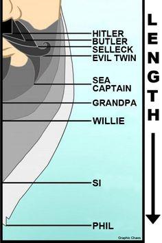Duck Dynasty Beard Chart