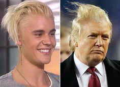 Donald Trump Funny Hair Memes : Bald eagle attacks donald trump bald eagle