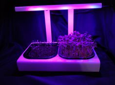 We are in the final testing phases for our newest MicroFarm Grow Unit. The unit features a completely new minimalist design that creates more utility while providing a far more durable product. The...