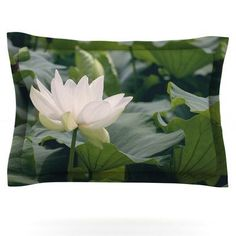 KESS InHouse White Lotus by Catherine McDonald Featherweight Pillow Sham Size: King, Fabric: Cotton