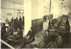 Mujeres trabajadoras en la antigua fábrica de cerillas de Tarazona