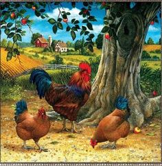 Chickens and roosters for decoupage. Discussion on LiveInternet - Russian Service Online Diaries Rooster Painting, Rooster Art, Red Rooster, Chicken Painting, Chicken Art, Diy Chicken Coop, Farm Animals, Animals And Pets, Arte Do Galo