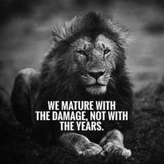 Most Motivational Quotes to Inspire for Success - Inspirational Quotes Encouragement Quotes, Wisdom Quotes, True Quotes, Funny Quotes, Best Motivational Quotes, Great Quotes, Inspirational Quotes, Hustle Quotes, Lion Quotes