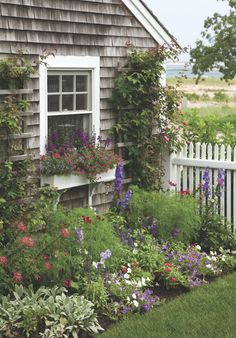 A Cape Cod seaside garden - I want to create this look on one side of my home.... so sweet, simple and charming ..... yet very colorful in a subtle way More