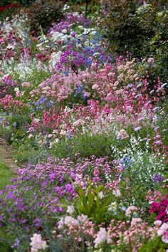 english cottage garden borders - This is what Im trying to achieve. - english cottage garden borders – This is what Im trying to achieve. I only wish … english cot - Cottage Garden Borders, Cottage Garden Design, Country Cottage Garden, Garden Ideas Cottage Style, French Garden Ideas, Garden Design Ideas, Cottage Front Yard, Border Garden, Backyard Cottage