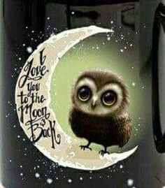 Art Drawings Owls 🦉 I love you to the Moon and Back Owl Owl Bird, Pet Birds, Quote Tattoos Girls, Tattoo Girls, Tattoo Quotes, Owl Always Love You, I Love You To The Moon And Back, Owl Pictures, Pics Art