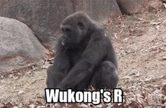 Wukon's Ulti. Yeap, looks about right.