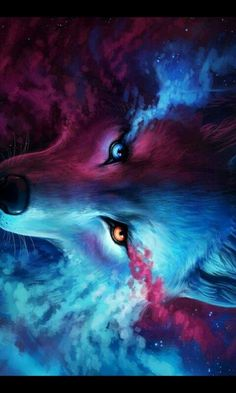 Galaxy wolf awwwwwww Galaxy wolf Wolf spirit Cool art