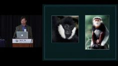 William Robichaud, Saola Working Group - WCN 2012 by Wildlife Conservation Network