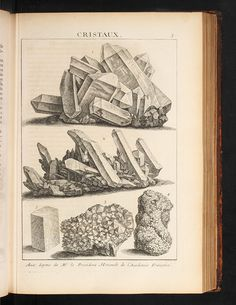 Antoine-Joseph Dezallier d'Argenville – Scientist of the Day Antoine-Joseph Dezallier d'Argenville, a French lawyer, gardener, and collector of natural history objects, was born July read. Illustration Cristal, Antique Illustration, Illustration Art, Ex Libris, Rock And Pebbles, Mineralogy, Mineral Stone, Rocks And Minerals, Art Techniques