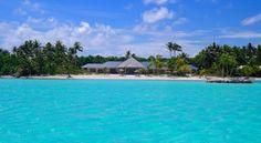 Bora Bora One on the Island Bora Bora, French Polynesia