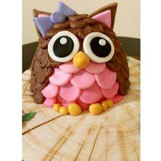"Giant chocolate owl cake pop ""smash cake"""