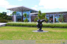 Jardim Botânico de Auckland  #Auckland #BotanicGardens #Nature #Garden