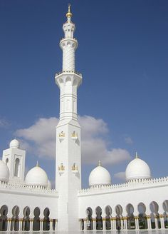 Part of the courtyard of the the Sheikh Zayed Grand Mosque, Abu Dhabi