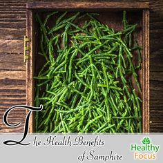 Samphire is a Nutritious Sea Vegetable with Many Health Benefits Including : Digestion, Bone Health, Immune Support, Stress Relief and Weight Control. Wellness Tips, Health And Wellness, Sea Asparagus, Sea Vegetables, Veggies, Weight Loss Secrets, Weight Control, Living A Healthy Life, Bone Health