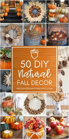 50 DIY Natural Fall Decor Ideas - - Decorate your home for Fall using pumpkins, leaves, acorns, wheat & more. These natural fall decor ideas will save you money and make your home look cozy. Autumn Nature, Autumn Home, Natural Fall Decor, Fall Banner, Autumn Decorating, Decorating Ideas, Fall Decorating Outside, Autumn Crafts, Nature Crafts