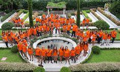 Quando Carrara si veste di arancione | Flickr – Condivisione di foto! Carrara, Table Decorations, Outdoor, Home Decor, Outdoors, Homemade Home Decor, Outdoor Games, Outdoor Living, Decoration Home