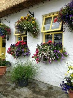 What's on your windowsill? Flower boxes add a lot of character to your home! Use flower boxes to make your house a home! Window Box Flowers, Window Boxes, Window Sill, Flower Boxes, Hanging Flowers, Hanging Plants, Cottage Windows, Garden Windows, Through The Window