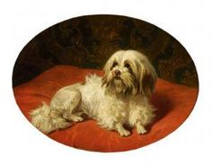 Conradijn Cunaeus, Dog On Red Pillow