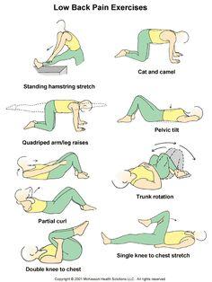 Low Back Pain Exercises Patient Handout on Pinterest | Low Back Pain ...