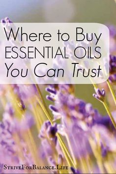 Be careful you're not buying diluted oils with icky ingredients.  This article is an eye opener.