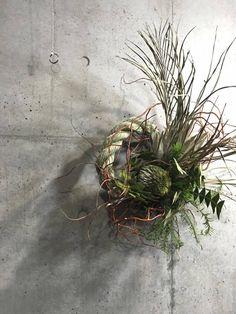 番長の部屋の画像 Christmas Wreaths, Christmas Decorations, Xmas, Japanese New Year, Wreaths And Garlands, Green Wreath, New Years Decorations, Front Door Decor, Dried Flowers