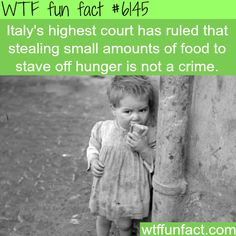 Don't punish the hungry for stealing food - WTF fun facts