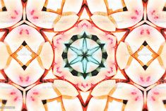 Succulent Mandala in Hand Painted Watercolour Style A Mandala in a Hand Painted Style on Paper, Digitally Designed from my Photographic Image of a Succulent Plant. Abstract Stock Photo Photo Composition, Abstract Images, Photo Illustration, Image Now, Royalty Free Images, Fashion Photo, Watercolour, Succulents, Arts And Crafts