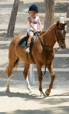 Get some fresh air and have some fun horse-riding at Aphrodite Hills in Cyprus