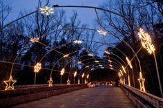 Holiday Lights on the River at Saluda Shoals Park