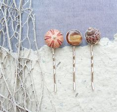 Sea Urchin Collection - Three Bobby Hair Pins - Sea urchin, Mother of Pearl and Shell