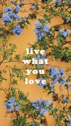 GOOISCH ⍟ quotes ⍟ inspiratie ⍟ live what you love ⍟ wallpaper ⍟ background ⍟ positive vibes ⍟ note to self Cute Backgrounds, Aesthetic Backgrounds, Aesthetic Iphone Wallpaper, Cute Wallpapers, Wallpaper Backgrounds, Aesthetic Wallpapers, Phone Backgrounds, Tumblr Wallpaper, Screen Wallpaper
