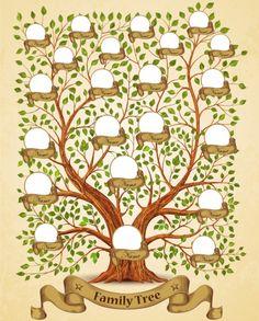 printable family tree diagram family tree template 3 Printable Pages Family Tree Diagram, Family Tree Template Word, Family Tree Poster, Family Tree Art, Family Tree Maker, Family Tree With Pictures, Family Tree Designs, Tree Wall, Tree Tree