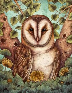 A wise barn owl art print with leaves and marigold blossoms. Created by artist Angela Rizza. Owl Print, Tattoo Stencils, Owl House, Beautiful Drawings, Cool Paintings, Art Pieces, Barn, Art Prints, Artist