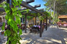 Every corner of Dalmatian #EthnoVillage is inspired by true values of Dalmatian tradition.