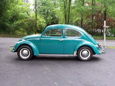 1964 VW Bettle - This looks like one of our bugs.  I think we will be taking this one to the wedding since she is a nice bold color compared to our bug.