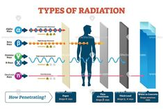 Types of radiation vector illustration diagram and labeled example scheme. Shown how alpha, beta, gamma, neutron and X rays works. Infographic what material stops this ionic beam penetration process. Physics Lessons, Learn Physics, Physics Notes, Physics And Mathematics, Quantum Physics, Physics 101, Nuclear Physics, Engineering Science, Physical Science