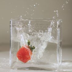 How to Splash Photography