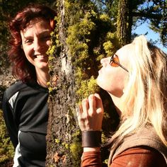 Middle Earth Home: blog of 2 gals' journey to off the grid and live self sustainably.