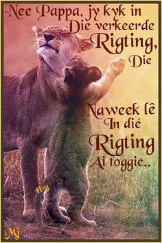 .... Afrikaanse Quotes, Goeie Nag, Godly Man, Day Wishes, Humor, Words, Motivational, Night, Humour