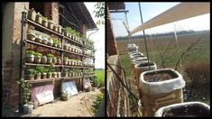 How To Build A Self Watering Vertical Garden - powered by solar panels and a wind turbine!