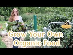 How to Grow Your Own #Organic Food
