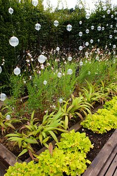 lots of cute outdoor decoration ideas