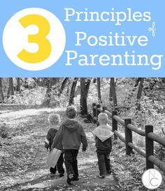Do you have an idea about the principles of positive parenting? The basis of positive parenting lies on five principles: respect, attachment, empathetic Parenting Articles, Parenting Advice, Kids And Parenting, Peaceful Parenting, Kids Behavior, Attachment Parenting, Raising Kids, Child Development, Toddler Activities