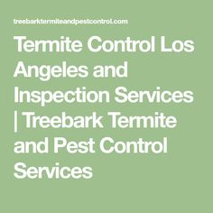 Professional Termite Control Los Angeles And Termite Inspection Services! Our Los Angeles Termite Experts Are Here to Help! Termite Inspection, Termite Control, Pest Control Services, Citrus Oil, Brisbane, Gold Coast, Building, Buildings