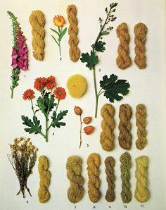 Natural dyes via PALE